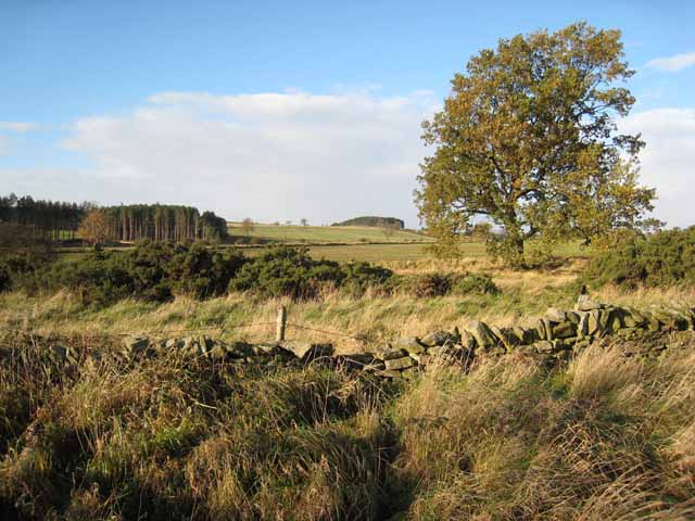 Countryside near Kiln Pit Hill