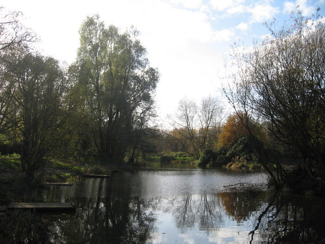 Autumn at the Fishing Pond, Carr Lane