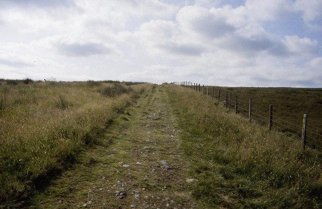 Maiden Way
