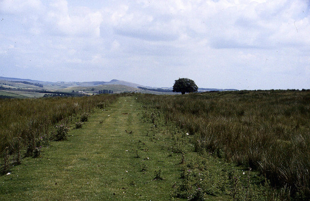 Pennine Way on Blenkinsopp Common