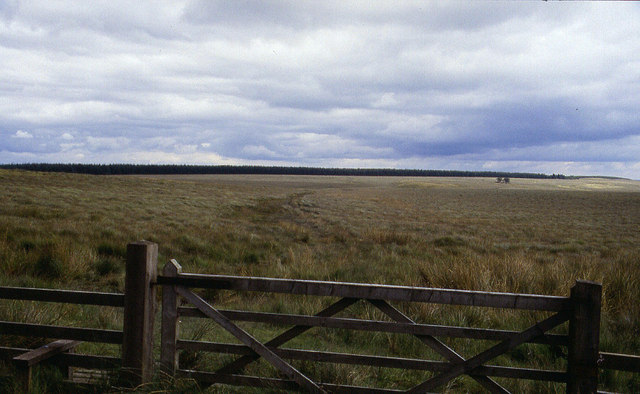 Pennine Way on Haughton Common