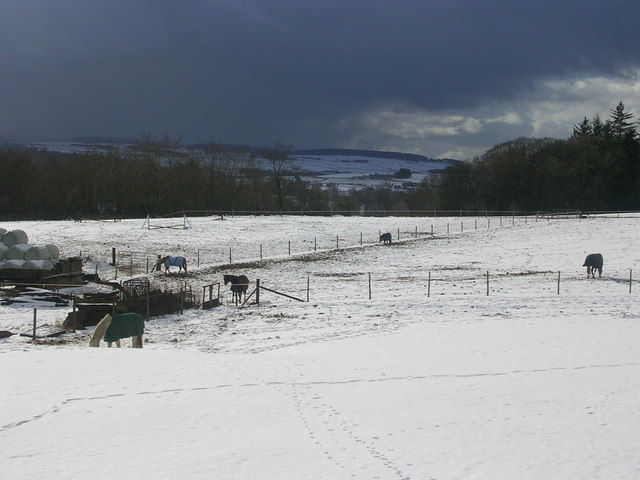 Milltimber Farm in the Snow