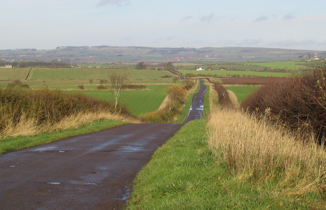 The minor road to Thornton Cottage and Thornton Park