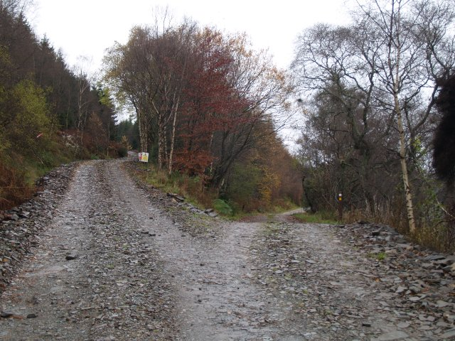 Track junction, St Mary's Loch