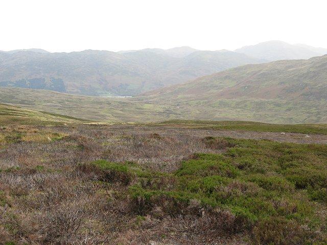 Moorland above Glen Tarken