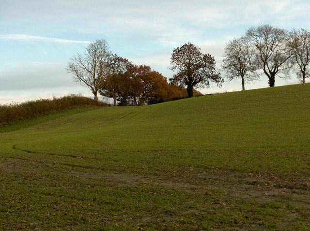 Farmland, Oare
