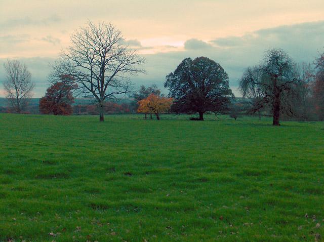 Farmland, West Wick