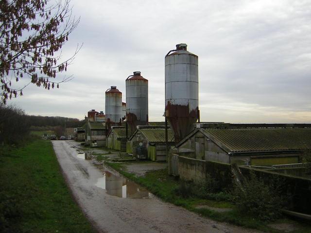 Throstle Nest Farm