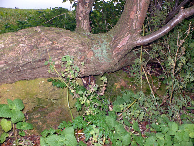 The Fonaby Sack Stone