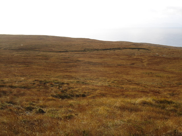 Moorland near Peterburn