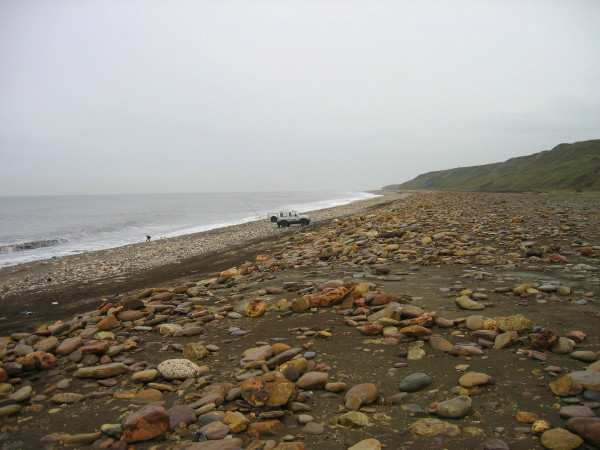 Part of Durham Coast National Nature Reserve