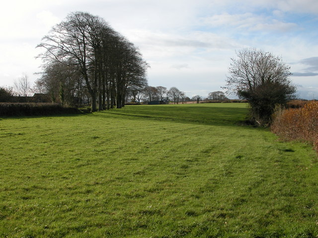 Farmland and trees to the north of East Westacott Farm
