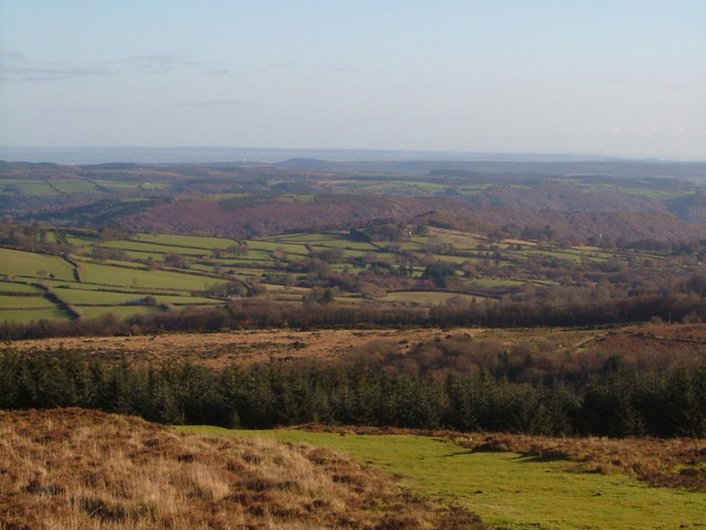 View from Hamel Down