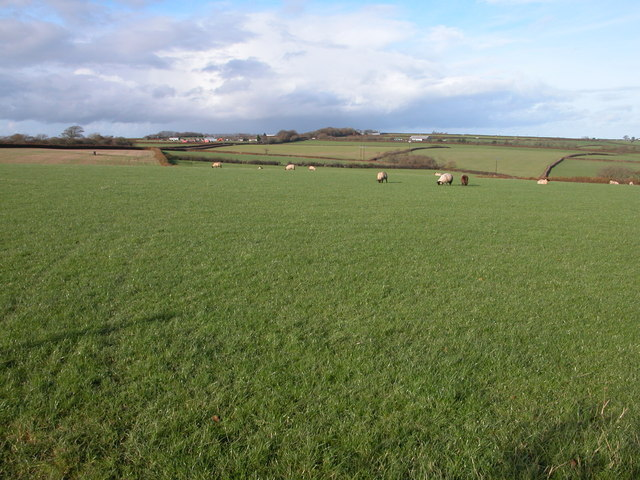 Farmland to the south-west of Northcott Barton