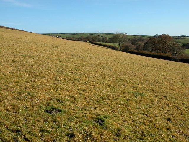 Farmland north of Lower Narracott Farm