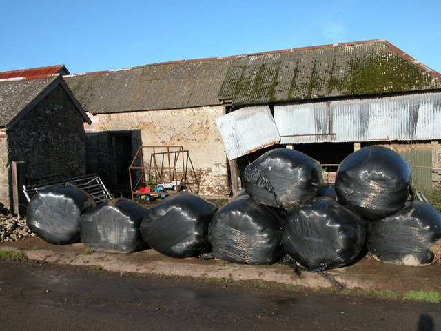 Silage bales at Lower Narracott
