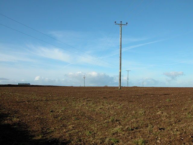 Power cables at Newpark Moor