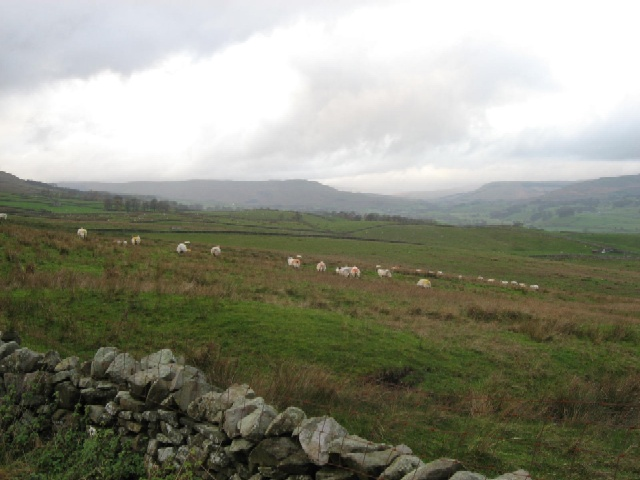 Bainbridge High Pasture