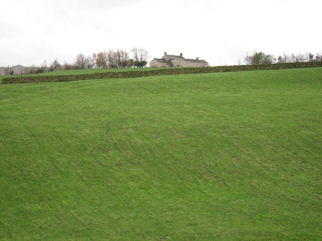 A Field Below Gill Edge Farm