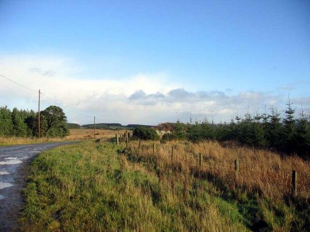 Track leading to Muirfield