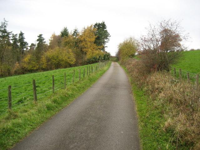 Access Lane to Lumley Farm