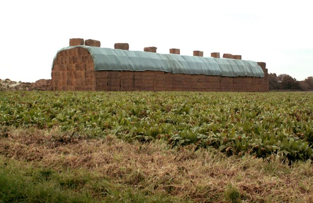 A giant haystack at Whitehouse Farm
