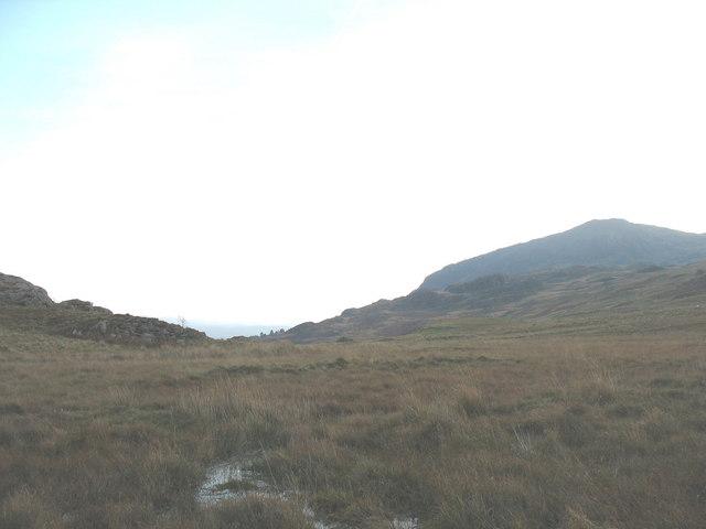 Wetlands in Cwm Afon Goch