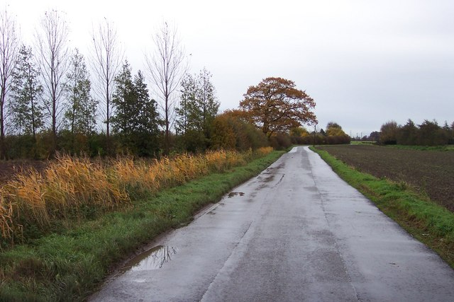 Smeeth Road near Popenhoe Farm