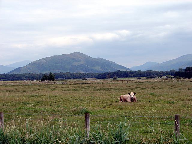 Farmland at Tywyn