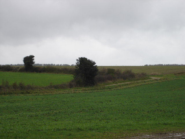 Track to Crichel Down