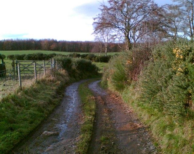 The lane to Blackhill