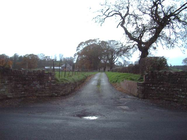 The Road to Myre Bank