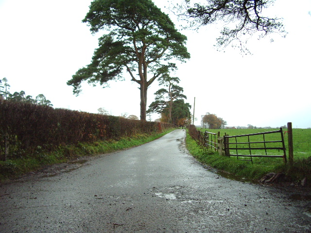 The Road to Cockleybank