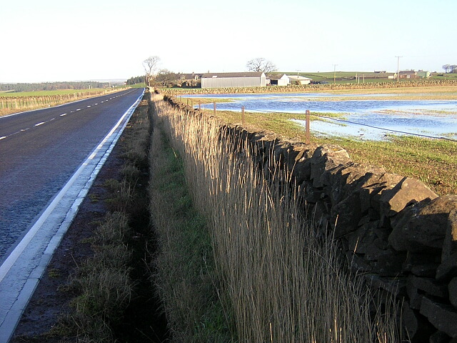 Flooding Beside A70 Near Millmoor