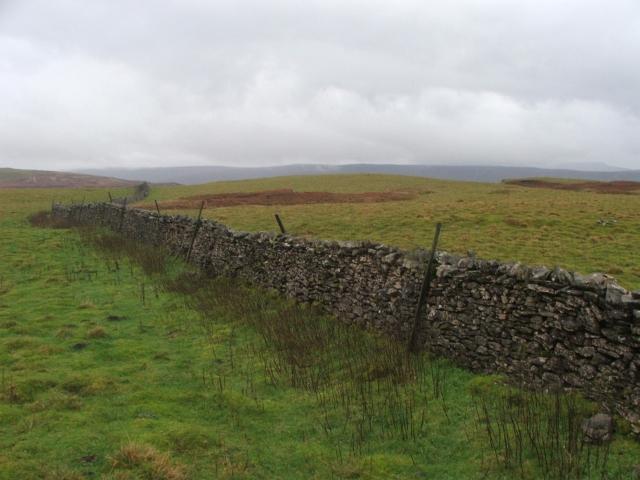 Drystone Wall on Wolside.