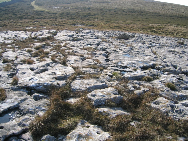 Limestone Pavement on the Great Orme