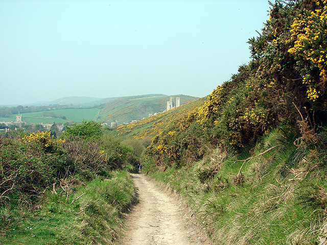 The Purbeck Way, ascending from Corfe