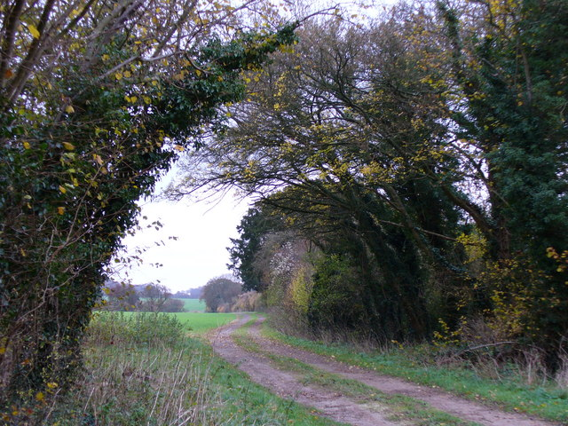 Bridleway west of Chilton Candover