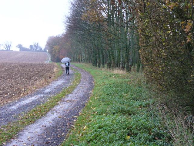Bridleway to Breach Farm