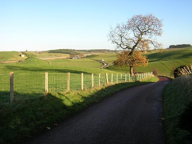 Minor Road Near Crookboat