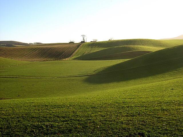Green Fields Near Crookboat