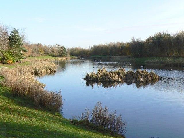 Stenton Pond