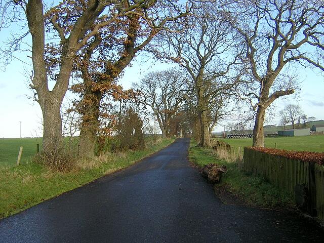 Minir Road Near Wolfcrooks