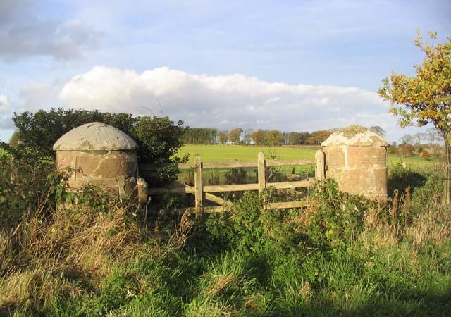Gate and stone pillars