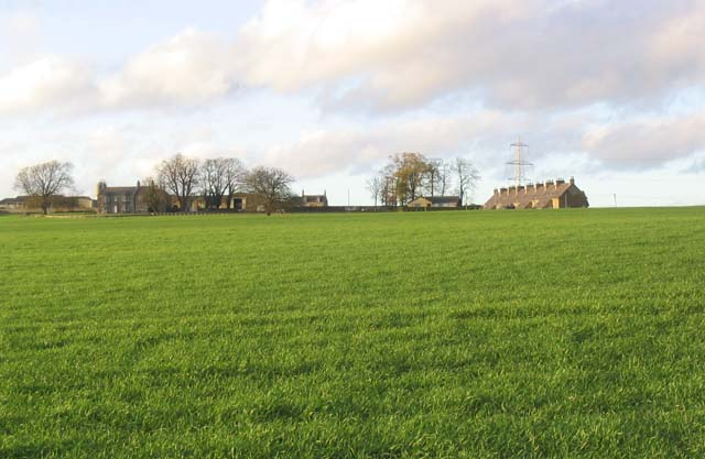 Hatchednize Farm