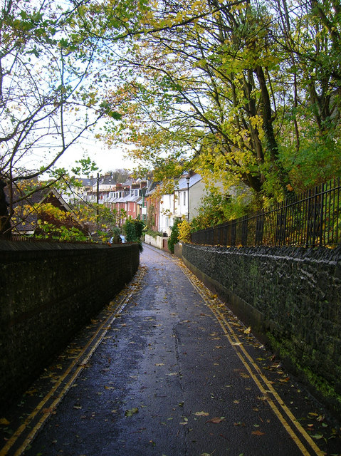 Paddock Lane