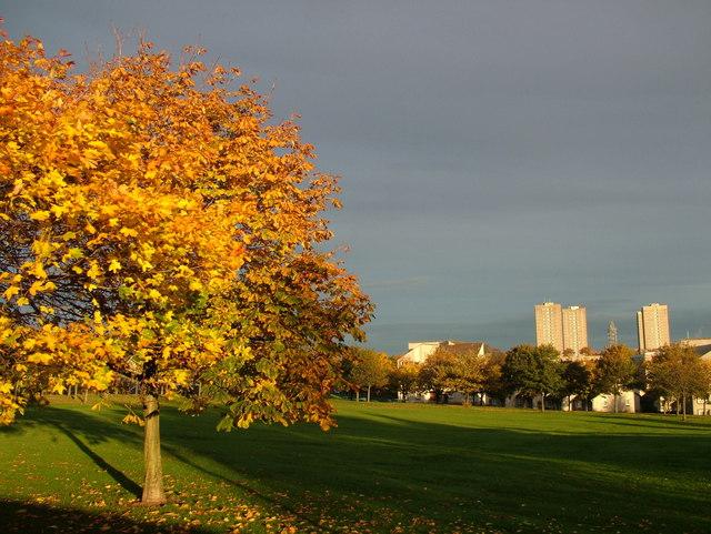 Autumn Colour at Midstocket