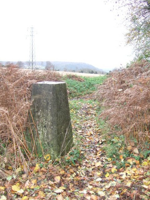 Chapel Wood Trig Point