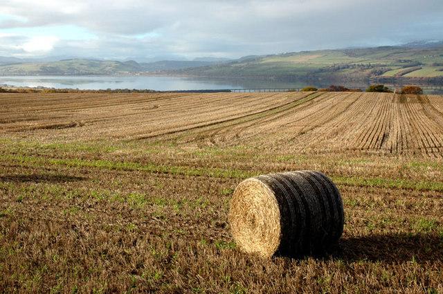 Farmland near Culbokie