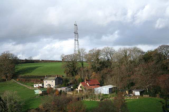 Dalwood: above Hawley Cross